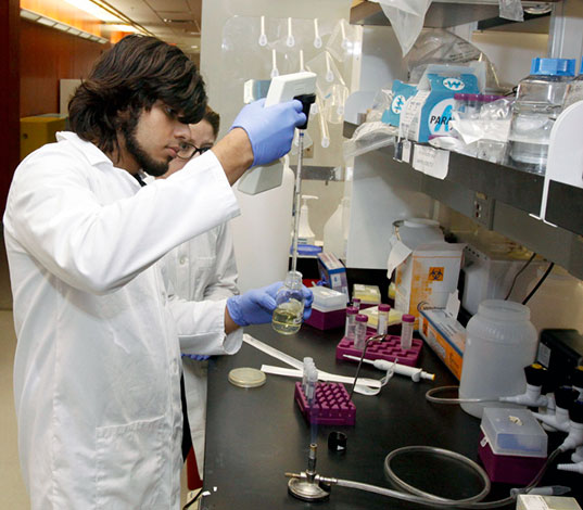 Students working within the lab of biologist Jianjun Sun, Ph.D., are searching for chemical compounds that can combat anthrax toxins. Photo by Ivan Pierre Aguirre / UTEP News Service