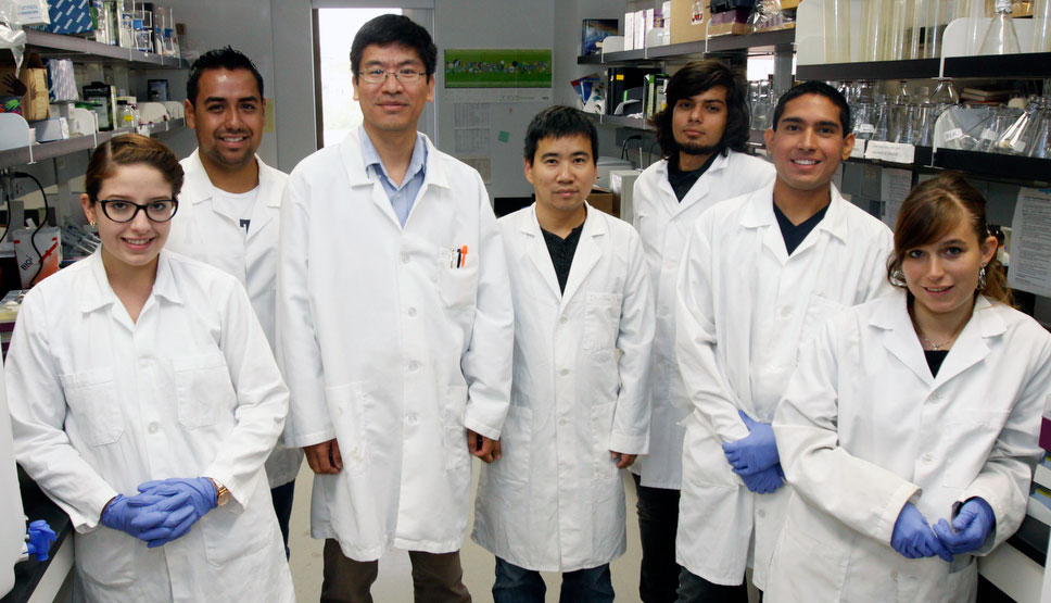 Jianjun Sun, Ph.D, assistant professor of biological sciences (third from left), leads a team of undergraduate and graduate researchers that are studying how anthrax kills healthy cells. Photo by Ivan Pierre Aguirre / UTEP News Service