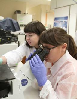 Latest Lab Targets Stem Cells