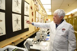 UTEP Researchers Lead Battle Against Mosquitoes